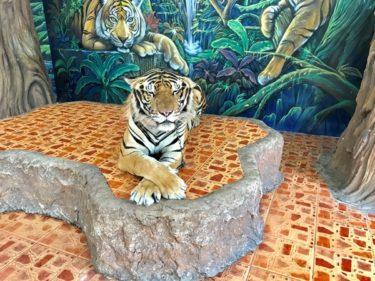 【名所】Sriracha Tiger Zoo(シラチャタイガーズー)